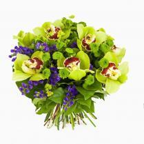 Букет из зеленой орхидеи