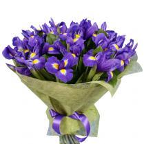 Букет из фиолетовых ирисов (21 шт.)