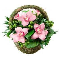 Корзинка с розовой орхидеей.