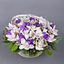 Корзина с орхидеями микс