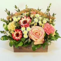 Ящик с гермини и розами